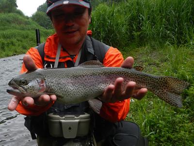 Fish140601